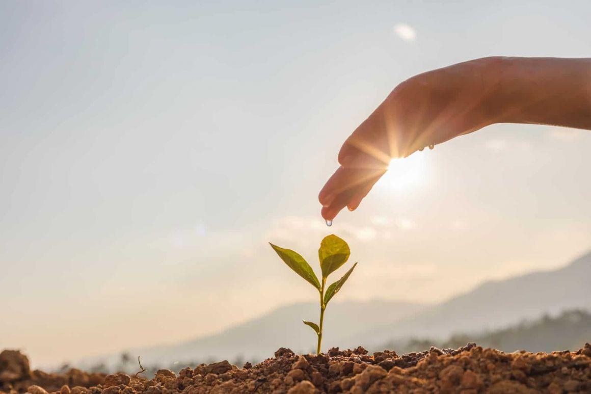 Az InvestEU sikere a pénzintézetek hozzáállásától függ