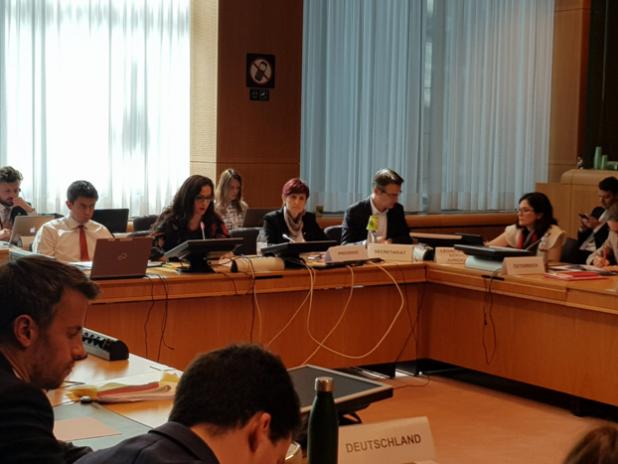 Az EU Tanácson belül működő Agenda 2030 Munkacsoport romániai elnökségének mérlege